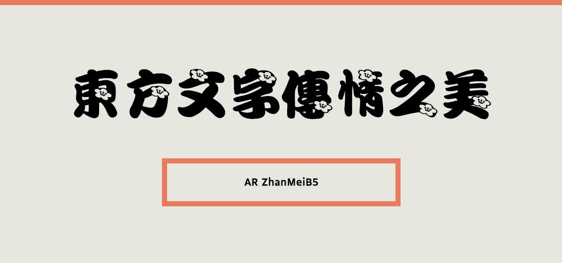 AR ZhanMeiB5