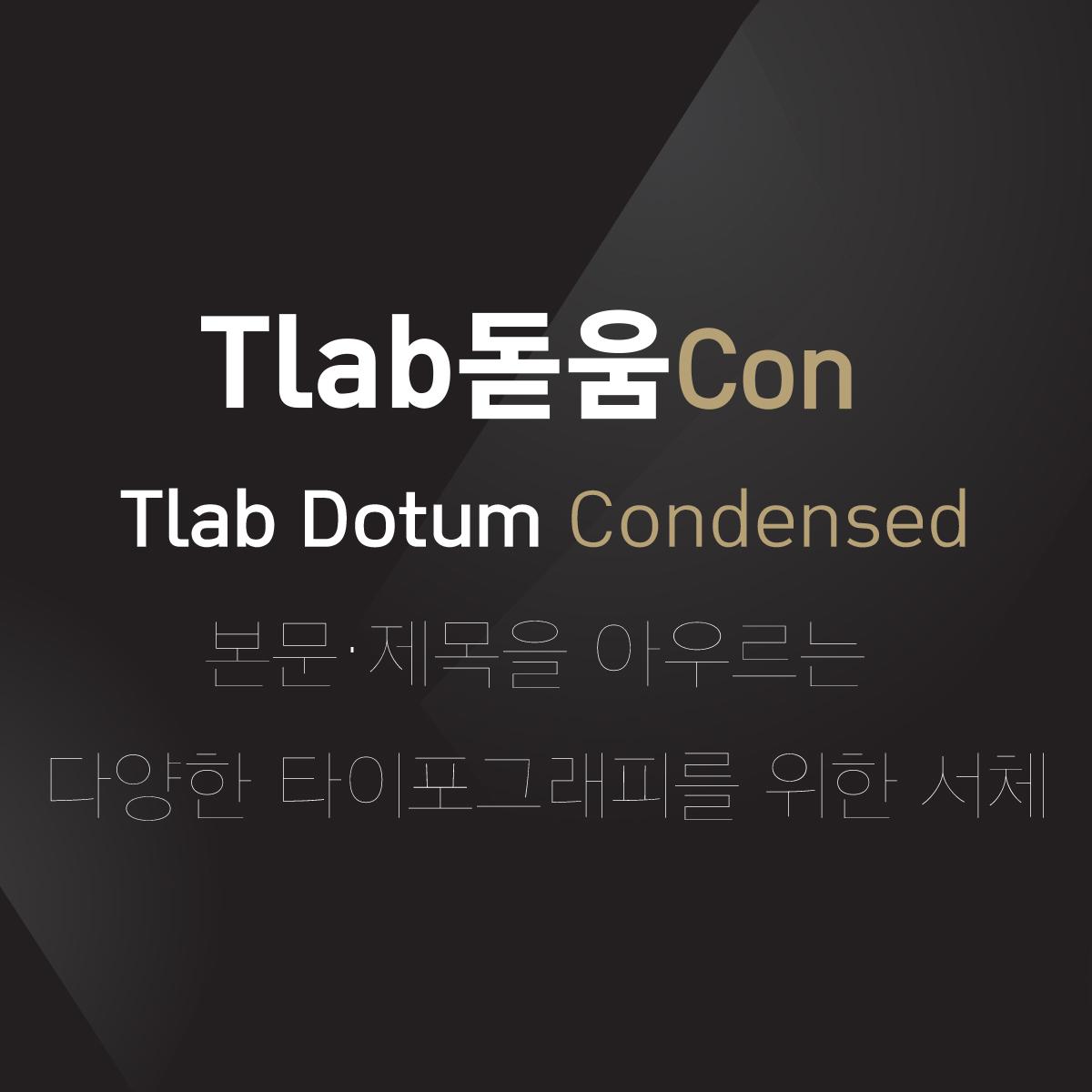 Tlab돋움Con