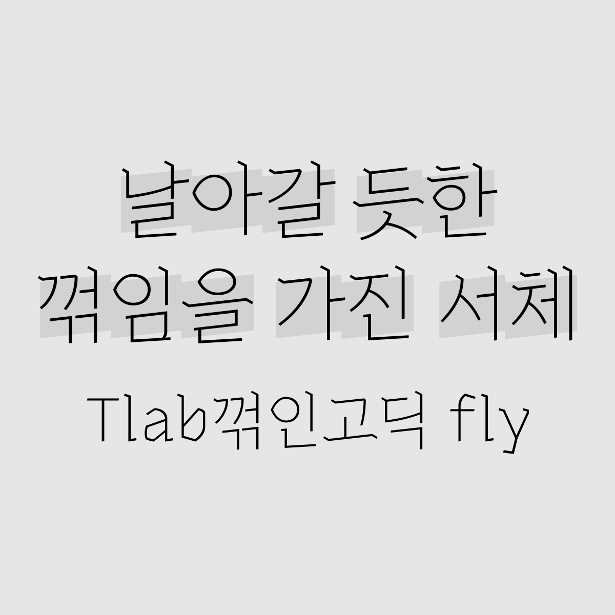 Tlab꺾인고딕fly