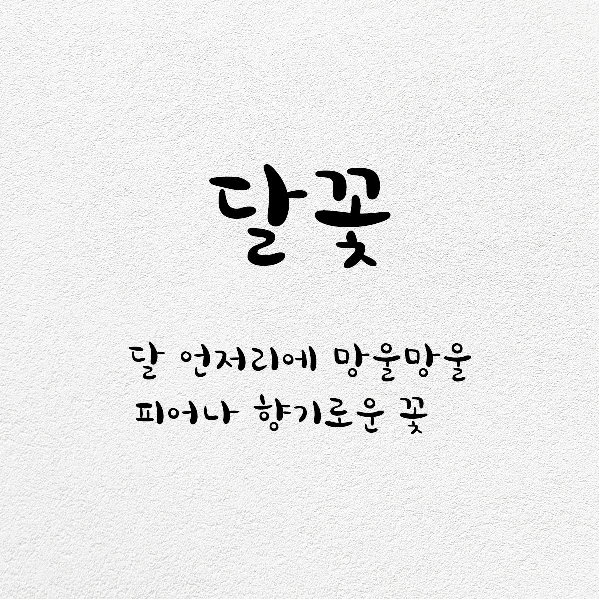 타이포_달꽃