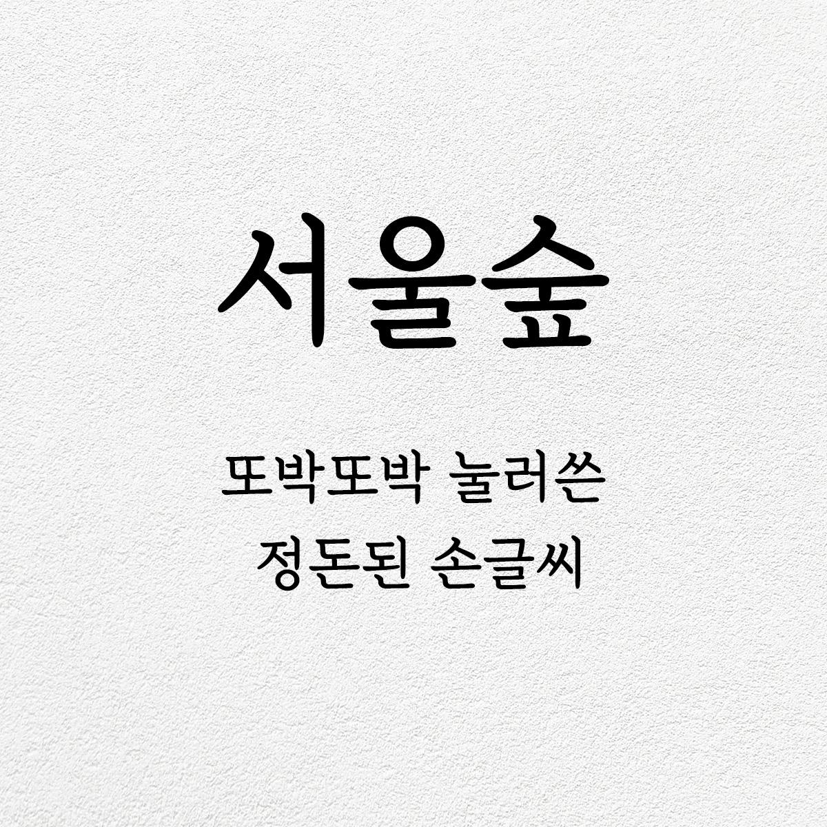타이포_서울숲